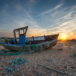 Dungeness-506