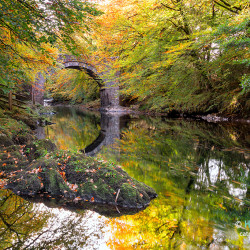 Holne-Bridge-Dartmoor-012