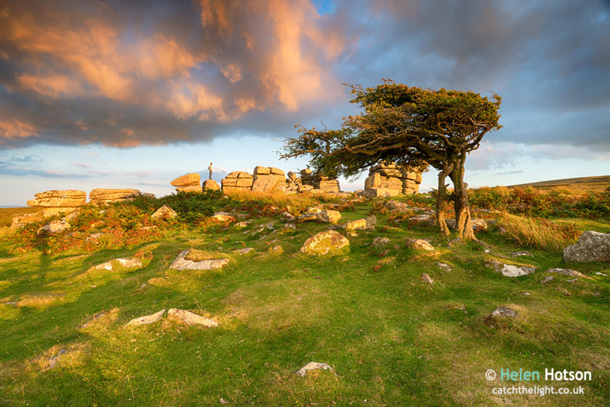 Evening Light at Combestone Tor