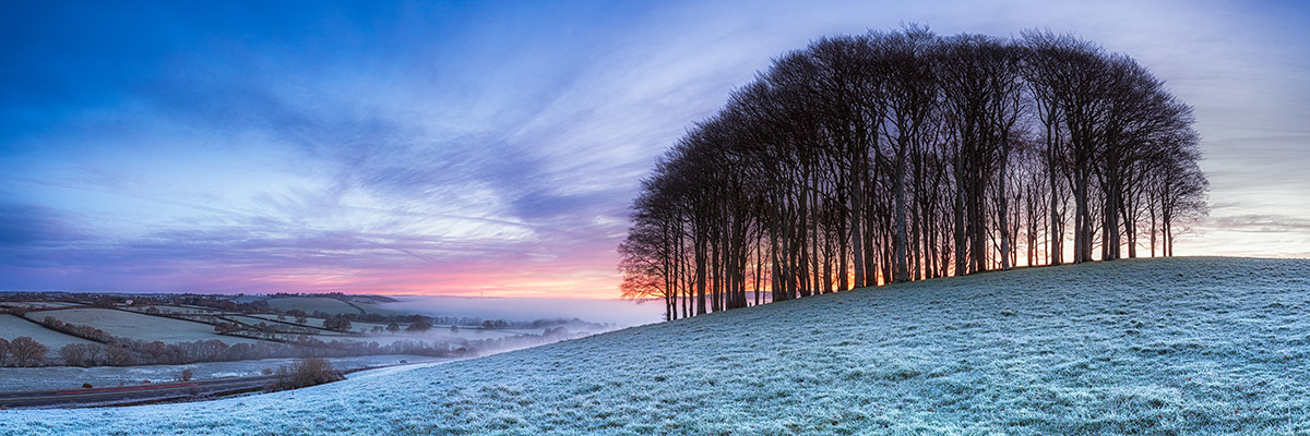 Frosty English Landscape